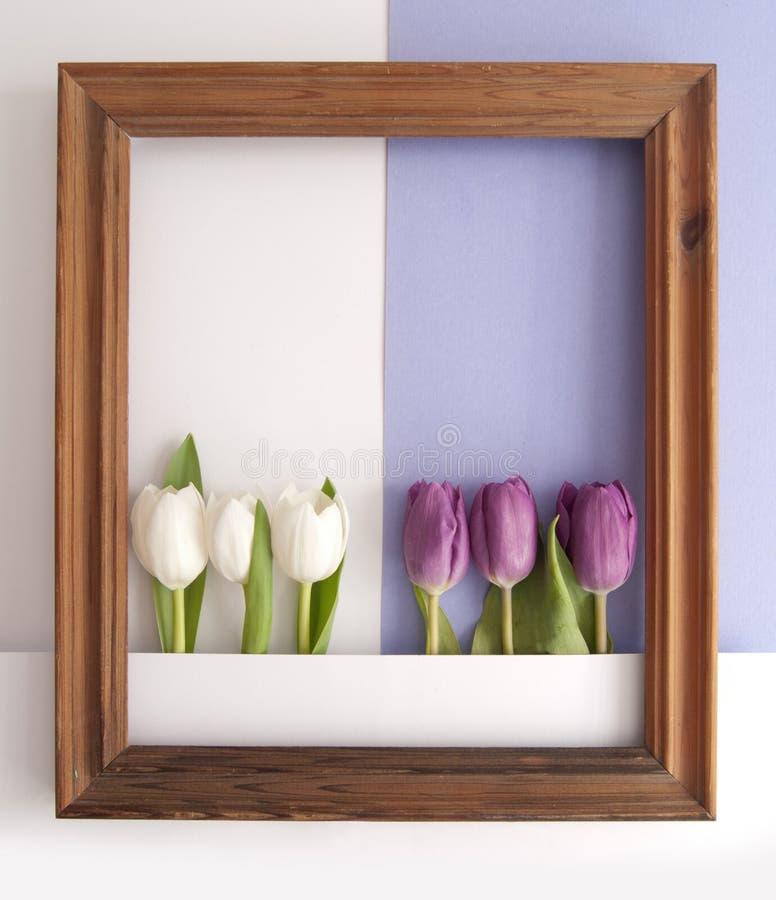 Spring flower frame background vector illustration