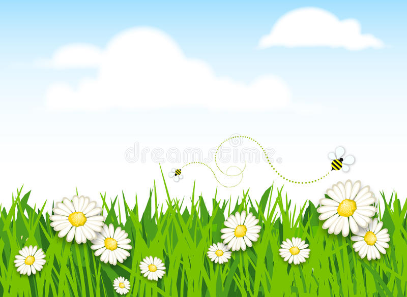 Download Spring Flower And Grass Background Stock Illustration - Image: 19162625