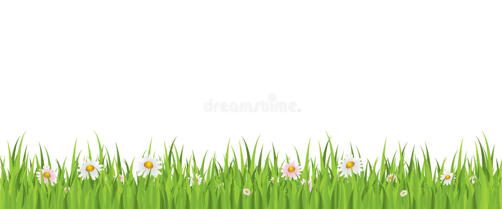 Spring Flower And Grass Seamless Background Stock Vector