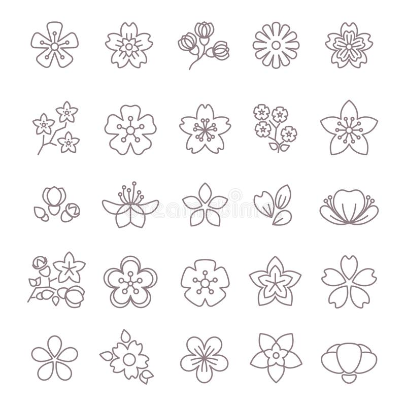 Spring flower thin line vector icons set. Floral flower with petal, collection of blossom flowers illustration vector illustration