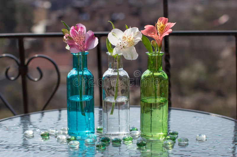 Spring flower in three glass bottles on table. Spring flower in three glass bottles on glass table royalty free stock photos