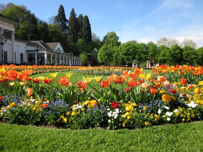 Spring flowergarden with tulips in Baden-Baden, Germany royalty free stock images