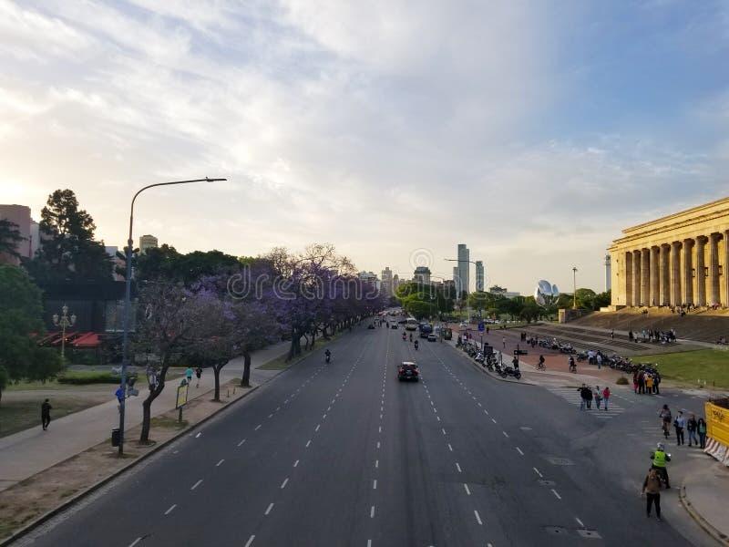 Spring flowering jacaranda in Buenos Aires, Argentina. Metallic royalty free stock images