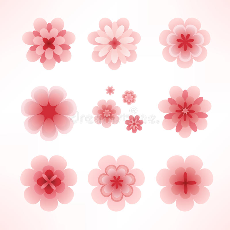 Download Spring flowers stock vector. Image of soft, pack, botany - 13428002