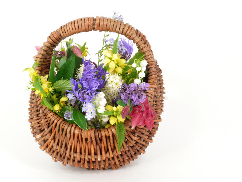 Download Spring flowers stock photo. Image of filled, meadow, green - 19483330