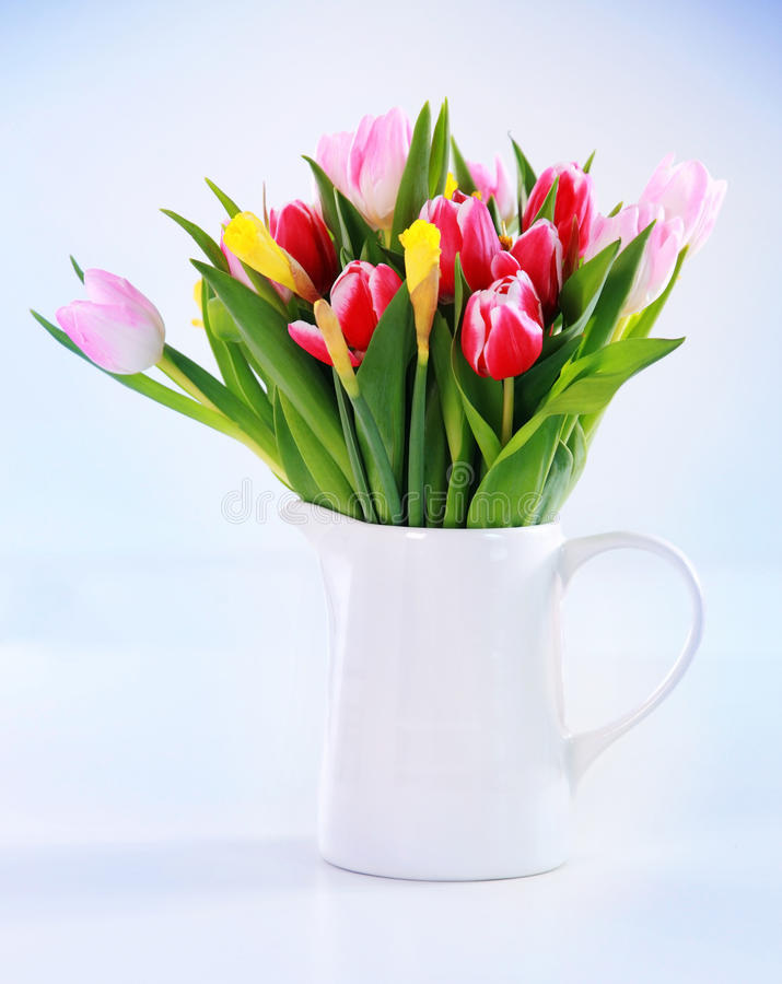 Free Spring Flowers Royalty Free Stock Photo - 23444895
