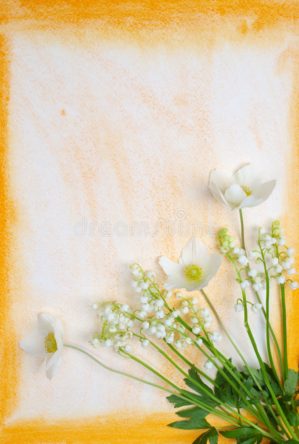 Free Spring Flowers Stock Photography - 2550682
