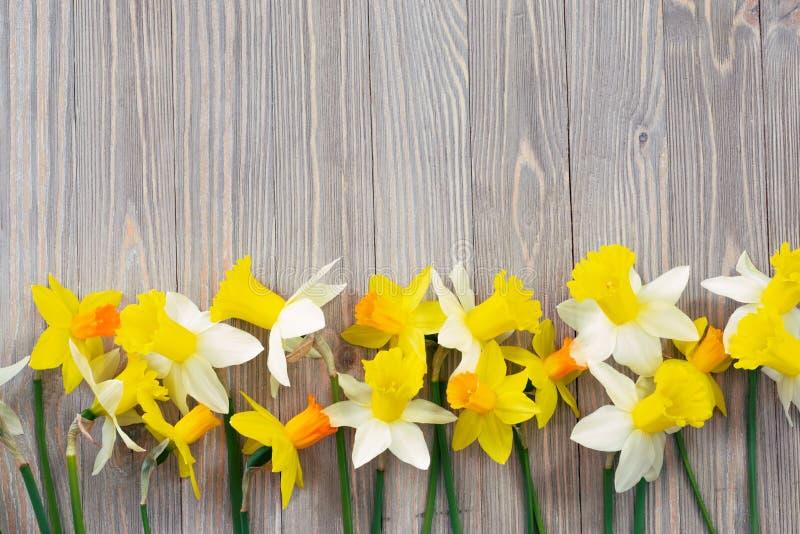 Spring flowers background stock image image of bloom 109627775 download spring flowers background stock image image of bloom 109627775 mightylinksfo