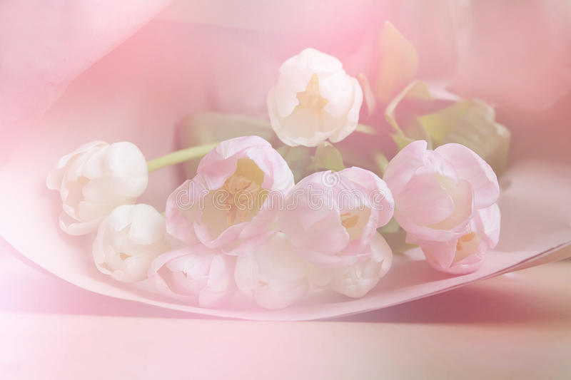 Spring flowers banner - bunch of pink tulip flowers on sweet background stock photography
