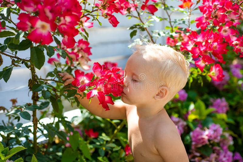 Spring flowers. Childhood. Childrens day. Small baby boy. New life concept. Spring holiday. Summer. Mothers or womens royalty free stock image