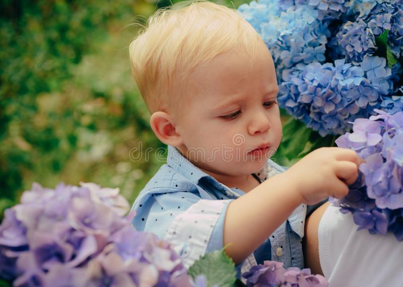 Spring flowers. Childhood. Childrens day. Small baby boy. New life concept. Spring holiday. Summer. Mothers or womens stock photography