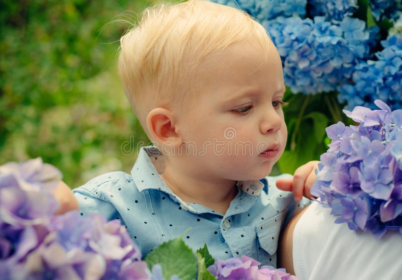 Spring flowers. Childhood. Summer. Mothers or womens day. Childrens day. Small baby boy. New life concept. Spring stock photo