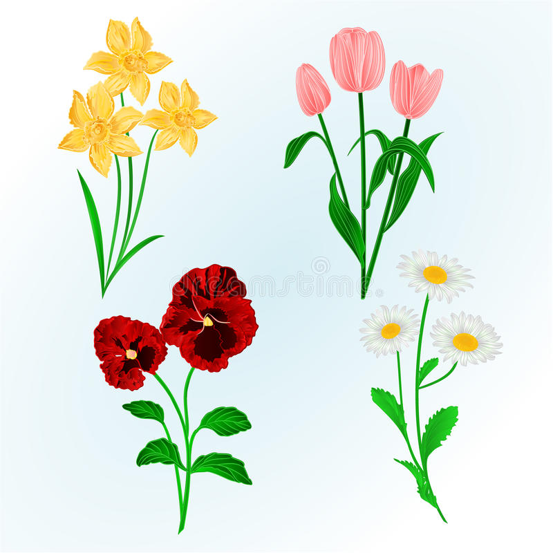 Spring flowers daffodils pansiestulips and daisies vintage hand download spring flowers daffodils pansiestulips and daisies vintage hand draw vector stock vector mightylinksfo