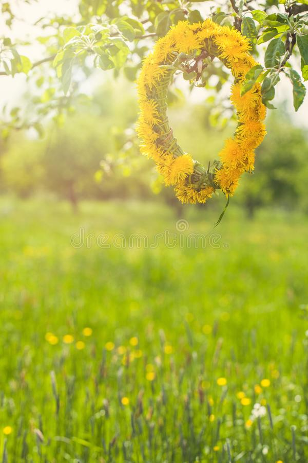 Spring flowers and green Leaves on abstract bokeh and blurred grass, health and Easter background stock photos