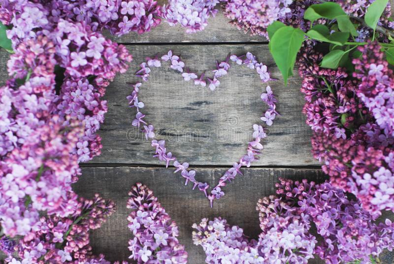 Spring flowers. Lilac flowers Frame Heart Shape Textured rustic Gray wooden background. Top view, flat lay stock images