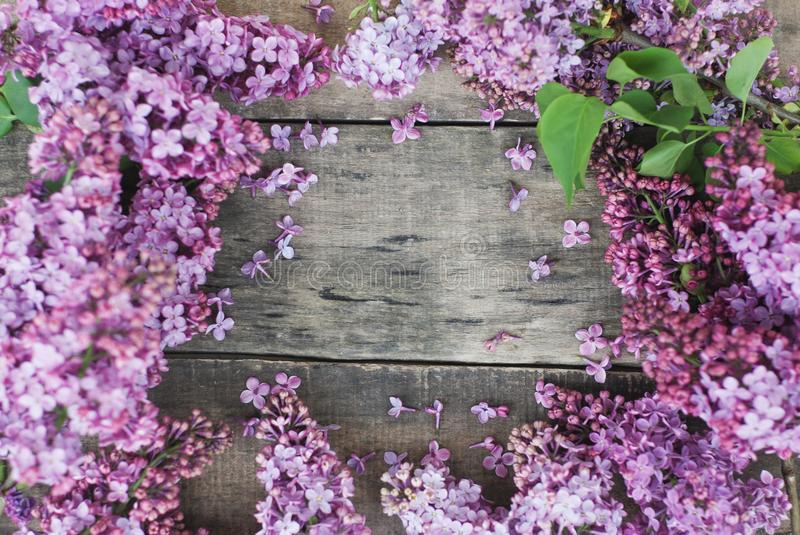Spring flowers. Lilac flowers Frame on Rustic Textured Gray wooden background. Top view, flat lay royalty free stock image