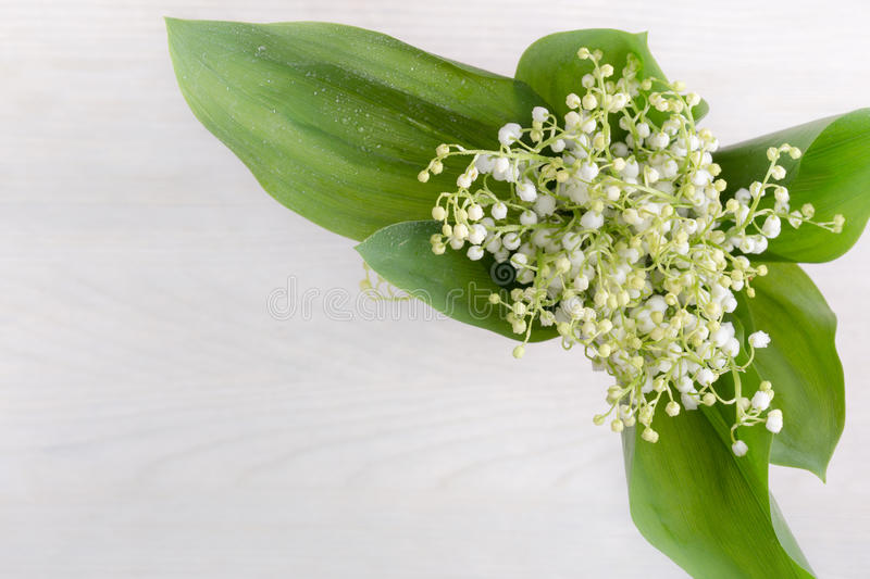 Spring flowers lily of valley on white wooden table, top view. Beautiful spring flowers lily of valley on white wooden table viewed from above royalty free stock photography