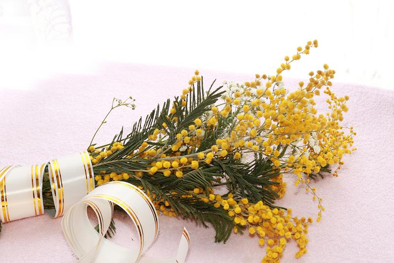 Spring flowers mimosa light background,. Wishes of good morning and happy women`s day royalty free stock photos