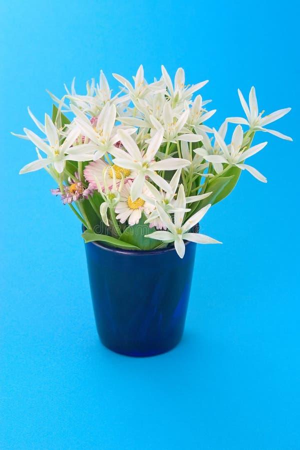 Spring flowers in mug