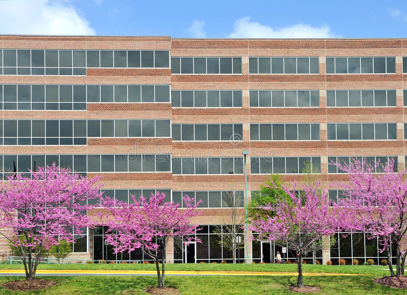 Spring flowers office building stock photography