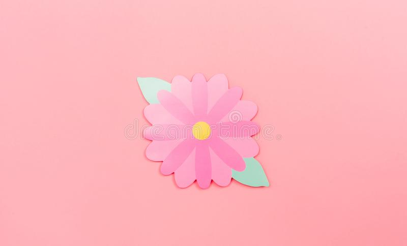 Spring flowers paper craftwork. On a pink background royalty free stock image