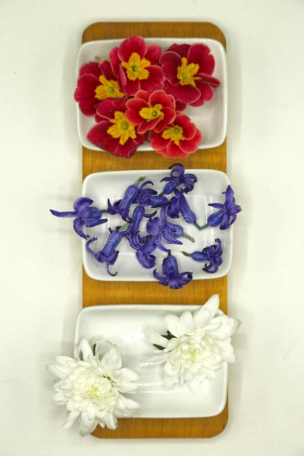 Spring flowers primrose, hyacinth, chrysanthemum arranged in white ceramic plates on a wooden tray. Spring flowers primrose, hyacinth, chrysanthemum arranged in stock photography