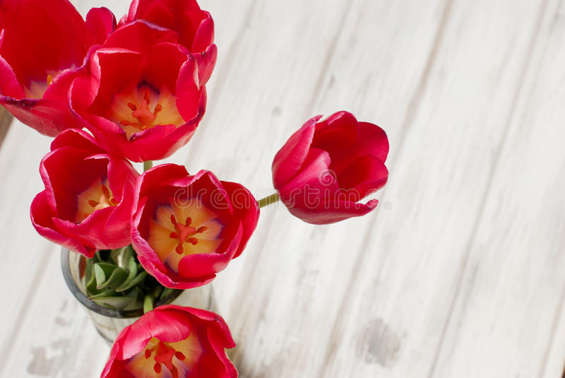 Spring flowers red tulips ina vase. Spring flowers of beautiful red tulips in a vase top view royalty free stock photography