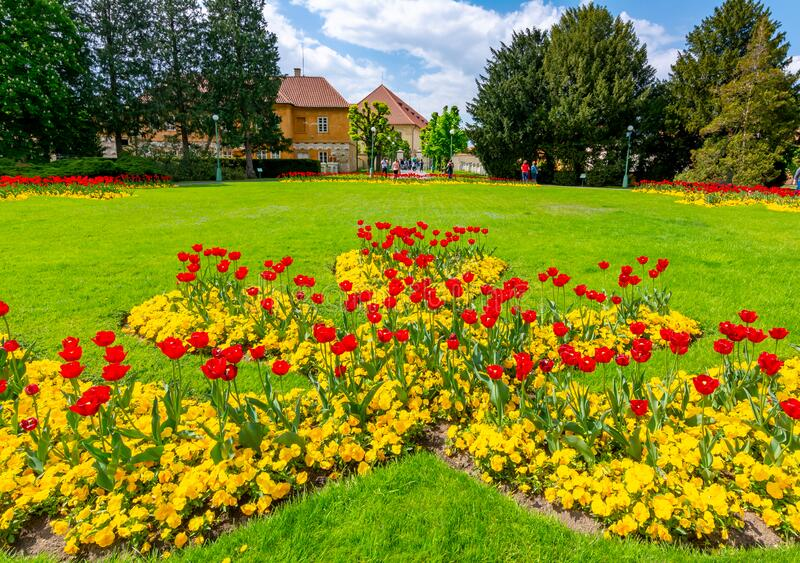 Spring flowers in Royal garden near Prague Castle, Czech Republic royalty free stock images