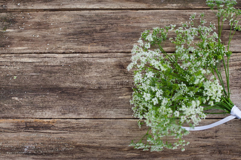 Spring flowers on wooden background, copyspace. Free space for text or commercials on old wood royalty free stock photos