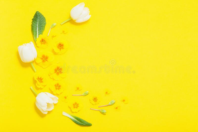 Spring flowers on yellow background. The spring flowers on yellow background royalty free stock photography