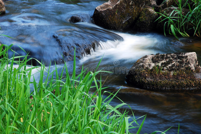 Download Spring flowing stream stock image. Image of park, flow - 29029355