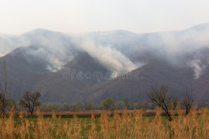 Smoke from a forest fire rises above the mountains of Sikhote-Alin ridge in Primorsky Krai Russia. In the spring, forest fires, caused by humans, are a frequent stock image