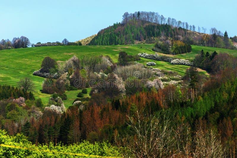 Spring fresh green highland landscape, Rajnochovice, Czech republic stock photos