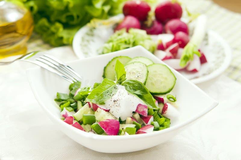 Spring Fresh salad stock photography