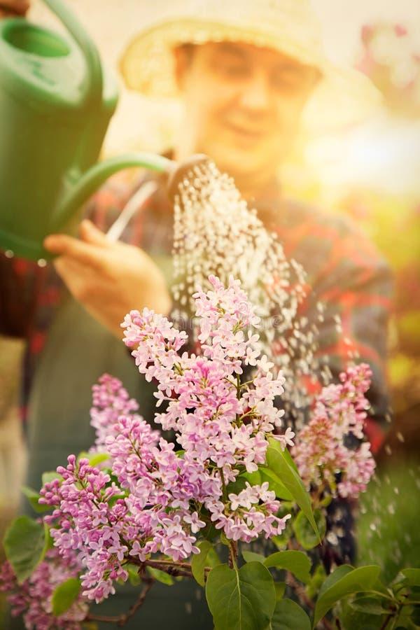 Free Spring Garden Concept Royalty Free Stock Photos - 29578088