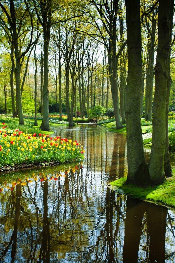 Spring garden landscape royalty free stock images