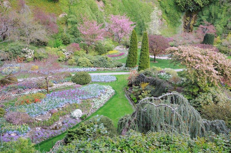 Spring garden landscapes royalty free stock photos