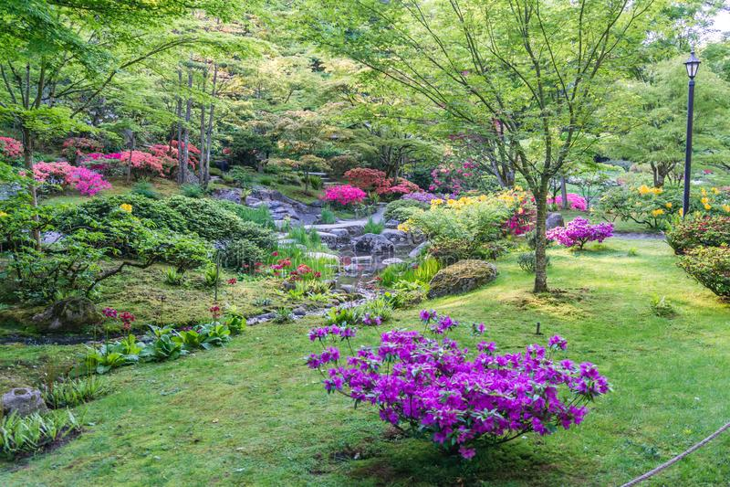Spring Garden Profuions 7 stock image