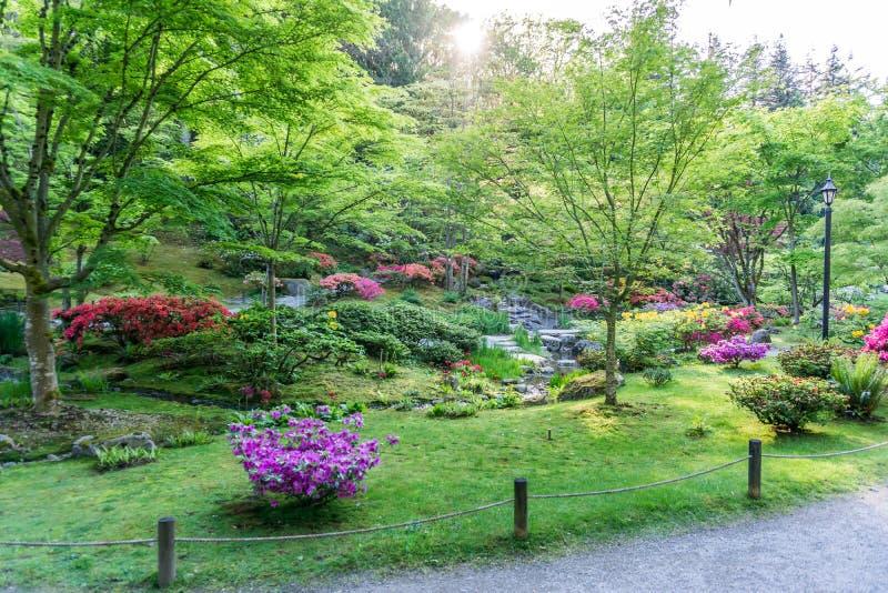 Spring Garden Profuions 9 royalty free stock photo