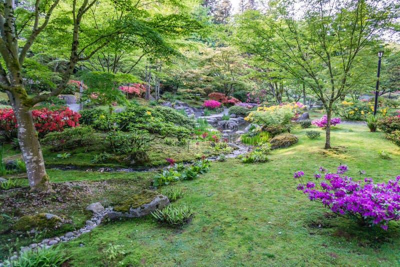 Spring Garden Profuions 6 royalty free stock photo