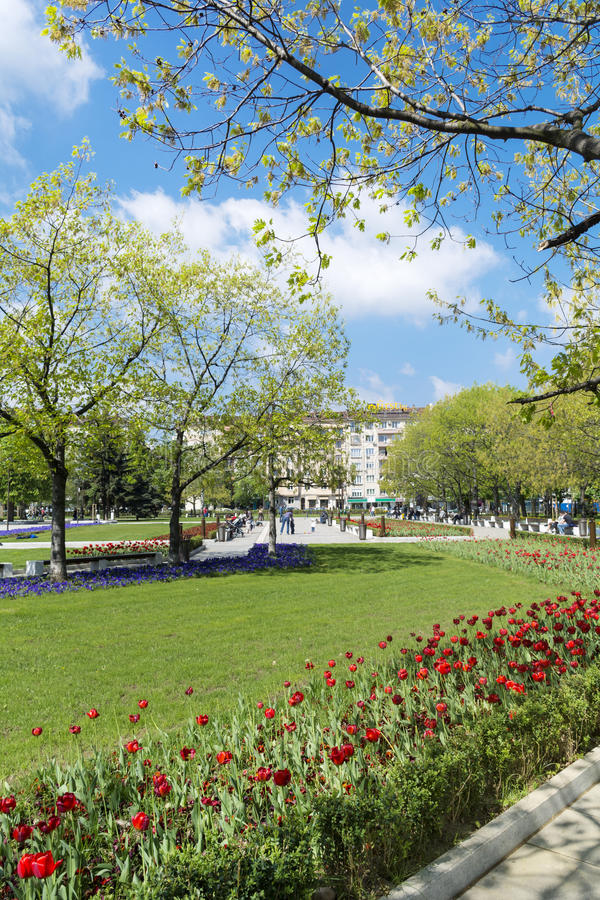 Spring garden with tulips in front of the National Palace of Culture, Sofia, Bulgaria. Spring blooming garden with tulips in front of the National Palace of stock images