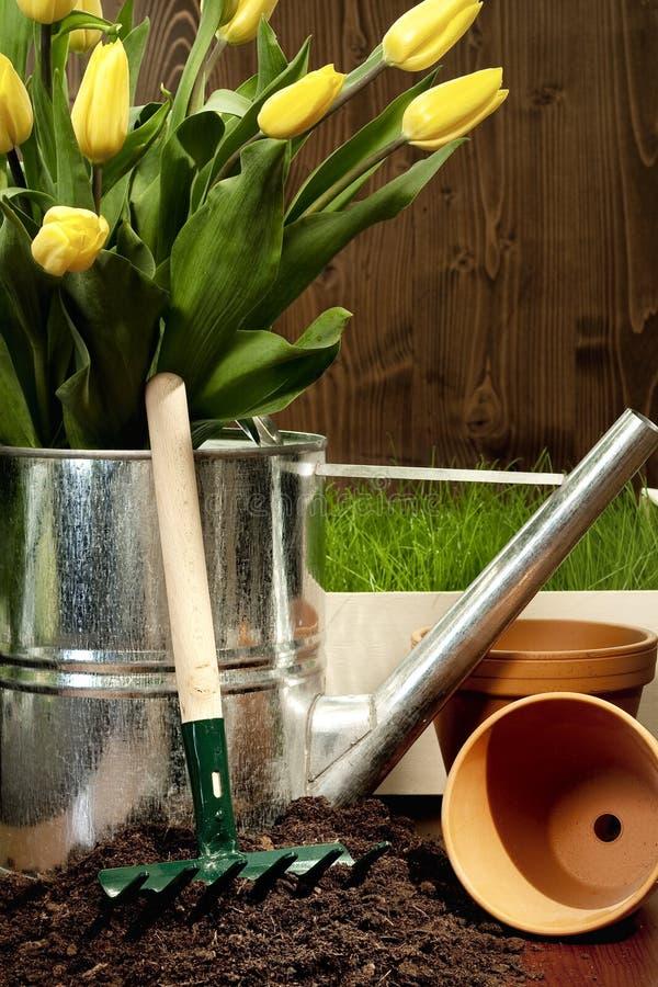 Free Spring Gardening Stock Photos - 8855983