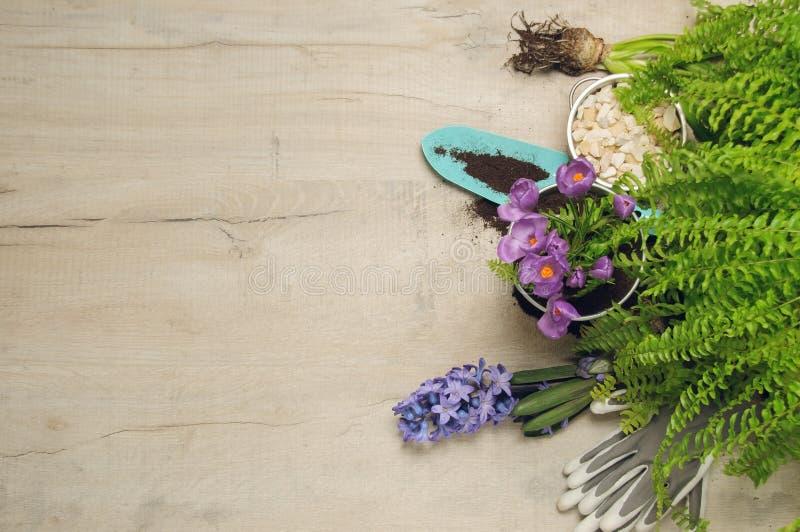 Spring gardening background stock images