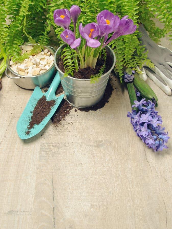 Spring gardening background stock photography