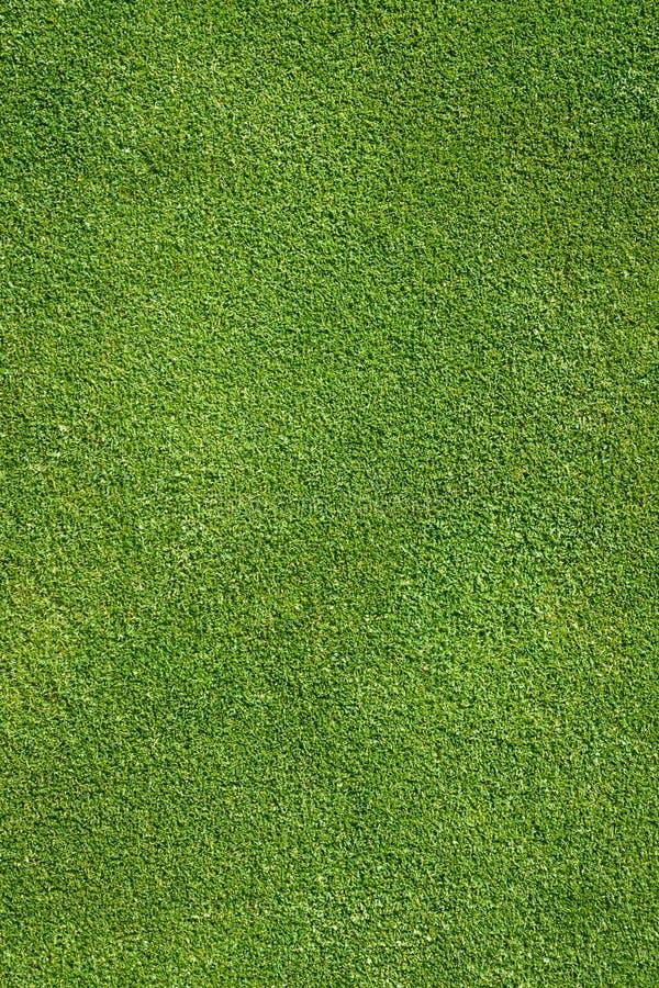 Free Spring Golf Stock Photos - 94973003