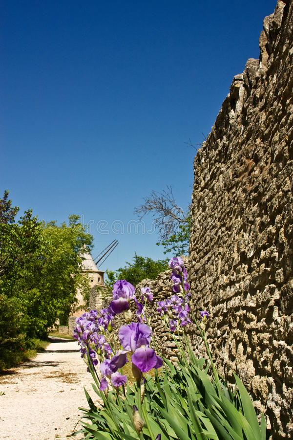 Spring in Goult. Flowers line an ancient wall that leads to the Jerusalem Windmill in Goult, France stock photos