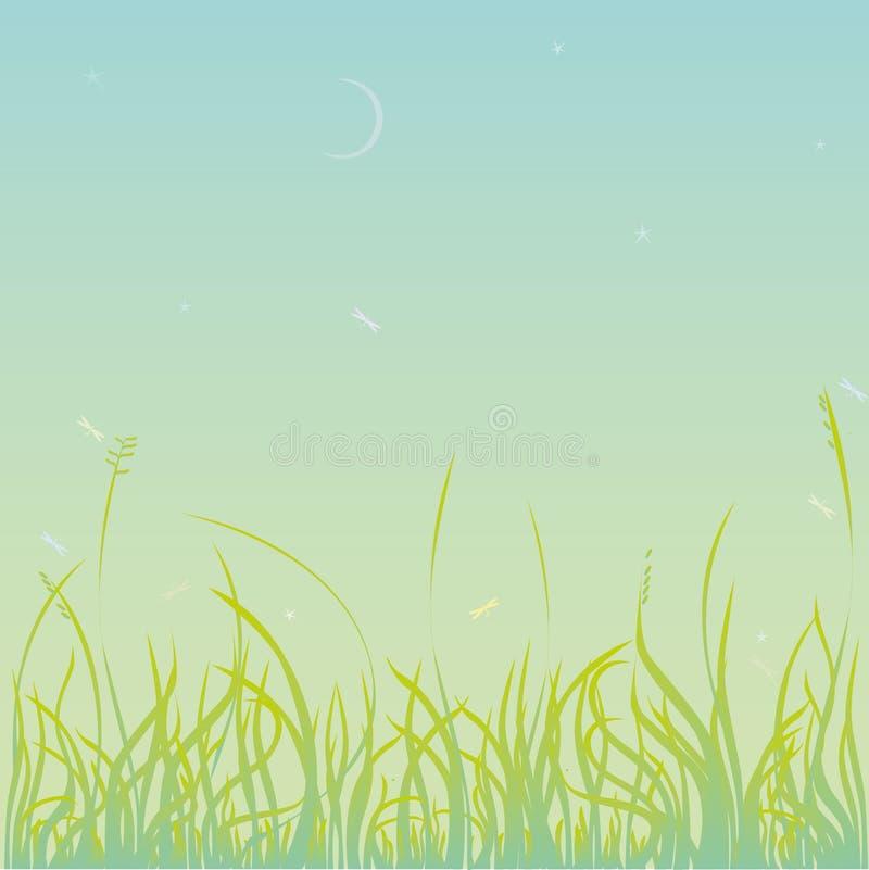 Spring Grass Royalty Free Stock Photo