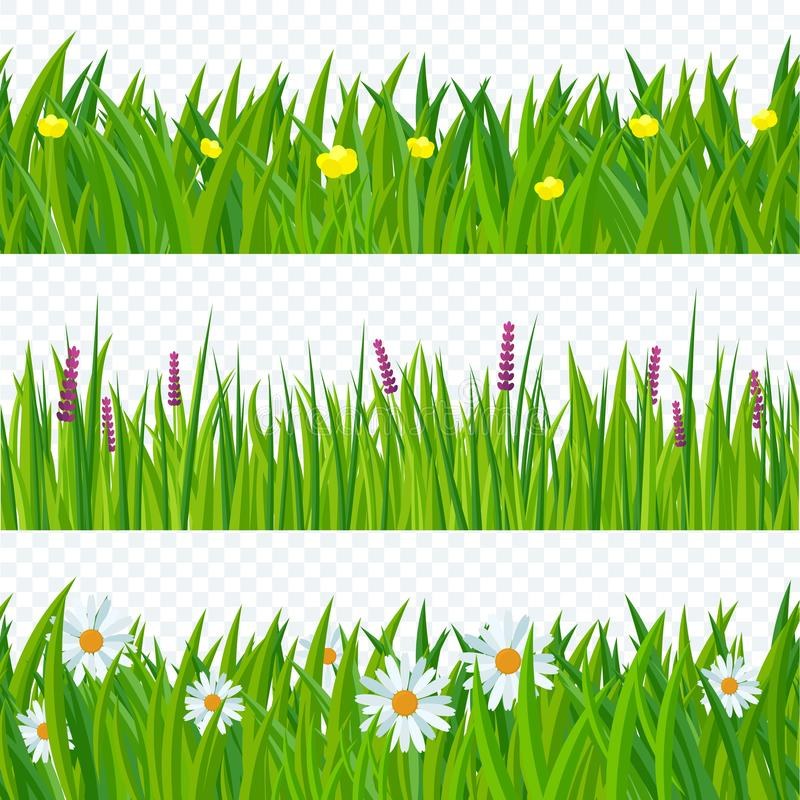 Spring grass and flowers. stock illustration