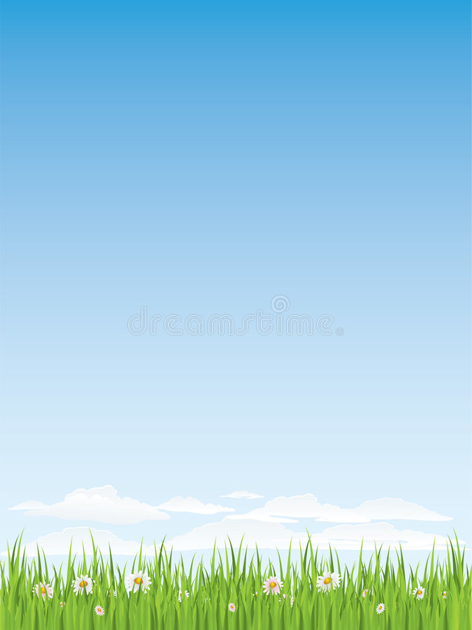 Spring Grass And Flowers.  Seamless Illustration. Stock Image