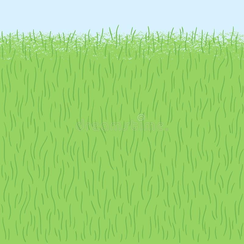 Spring grass, herb texture, seamless border background vector illustration